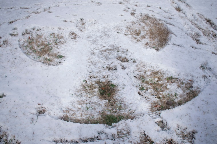 Snow Day_9.JPG